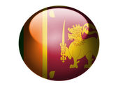 Sri Lanka flag painted on glossy round sphere or icon — Stock Photo