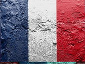 The French flag — Stock Photo