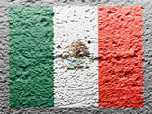 The Mexican flag — Stock Photo