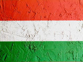 The Hungarian flag — Stok fotoğraf