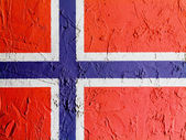 The Norwegian flag — Stockfoto