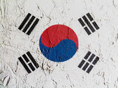 The South Korea flag — Stockfoto