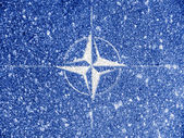 NATO symbol painted on — Stockfoto