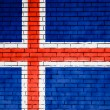 Icelandic flag — Stock Photo #15394947