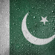 Pakistani flag — Stockfoto #15398779