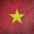 The Vietnamese flag - Foto Stock