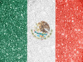 The Mexican flag — Stockfoto