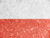 The Polish flag — Stok fotoğraf