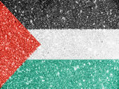 The Palestinian flag — 图库照片