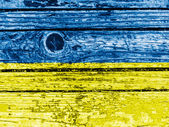 The Ukrainian flag — Foto de Stock