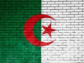 The Algerian flag — Foto de Stock