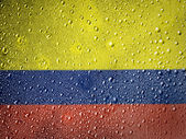 The Colombian flag — Stock fotografie