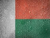 The Madagascar flag — Foto de Stock