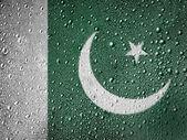 La bandiera pakistana — Foto Stock