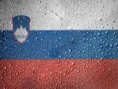 La bandiera della slovenia — Foto Stock