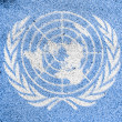 Stock Photo: The UN flag painted on
