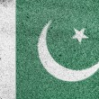 Pakistani flag — Stock Photo #15402801