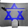 Jewish star painted on crocodile skin purse - Stock fotografie
