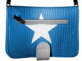 Somali bayrağı — Stok fotoğraf