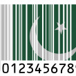 Pakistani flag — Stock Photo #23405096