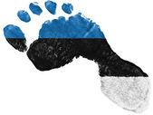 The Estonian flag — Stock Photo