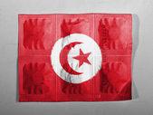 De vlag van tunis — Stockfoto