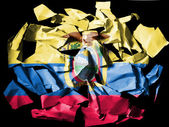 Ecuador flag painted on pieces of torn paper on black background — Stock Photo