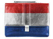 The Netherlands flag — Photo
