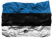 The Estonian flag — Foto de Stock