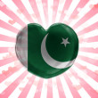 Pakistani flag — Stockfoto #23420656