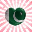 Pakistani flag — Stock Photo #23420656
