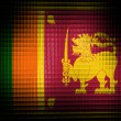 Sri Lanka flag — Stock Photo