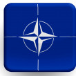 NATO symbol   painted on glossy icon — Stock Photo