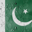 Pakistani flag — Stockfoto #23422670