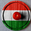 The Hungarian flag — Stock Photo #23424534