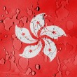Stock Photo: Hong-hong flag covered with water drops
