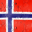 The Norwegian flag — Stock Photo