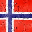The Norwegian flag — Stock Photo #23426440