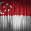 The Singapore flag — Stock Photo #23427028