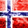 The Norwegian flag — Stock Photo #23427306