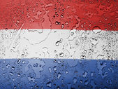 The Netherlands flag — Stockfoto
