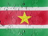 苏里南国旗覆盖着水滴 — 图库照片