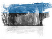 The Estonian flag — Stock Photo