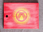 Kyrgyzstan flag painted over wooden board — Stock Photo