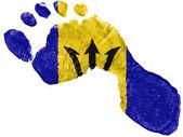 барбадос. барбадосский флаг, окрашены в форме след — Стоковое фото