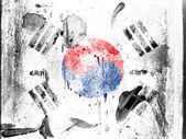 The South Korea flag — Photo