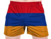 The Armenian flag — Stock Photo