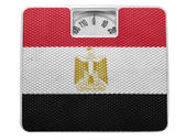 The Egyptian flag — Photo