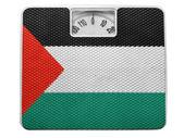 The Palestinian flag — Photo