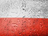 The Polish flag — Stock Photo